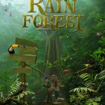the-rain-forest
